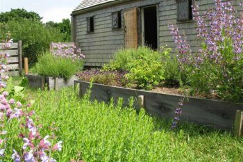 Oldest House Kitchen Garden, photographer Kathrina Marques.